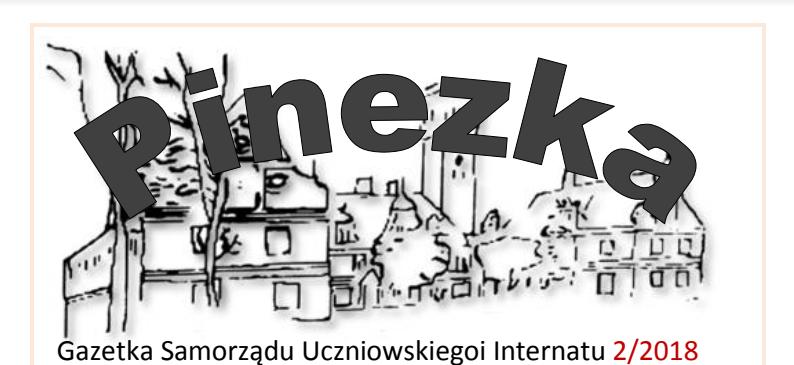pinezka2
